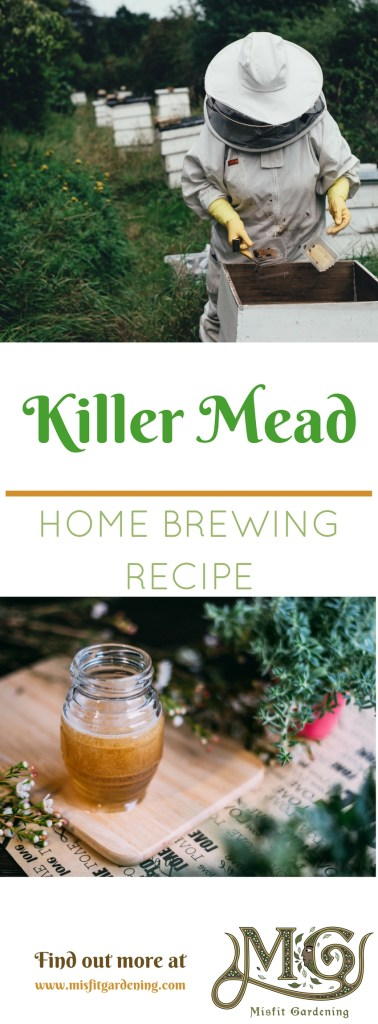 How to brew mead using killer bee honey. Click to find out how or pin it and save this recipe for later.
