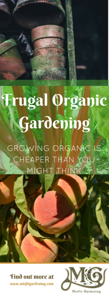 How to grow a frugal organic garden in your own backyard. Click to find out how or pin it and save for later.