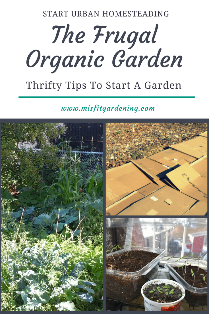 The Frugal Organic Garden
