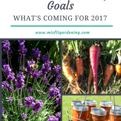 HOMESTEADING AND GARDENING GOALS FOR 2017