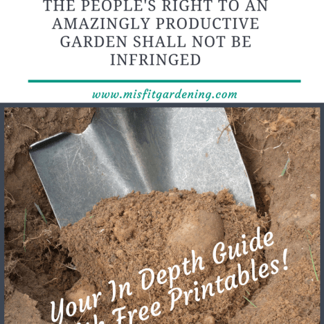 Find out all about soil amendments and how they can help you grow a productive garden. Click to find out more or pin it and save for later.