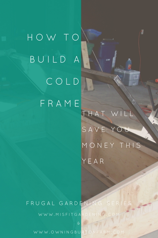 How to build a cold frame that will save you money this year. Click through to get started or pin it to save for later.