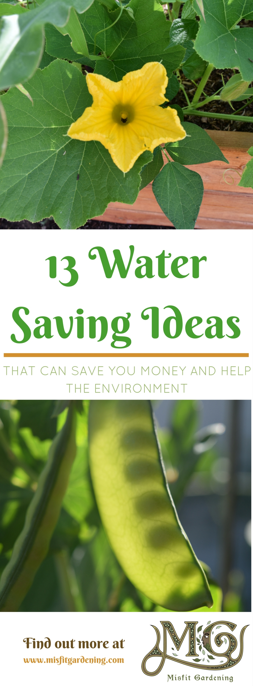 Find out how to reduce water in your vegetable garden with these 13 low water gardening methods. Click through to find out more or pin it and save for later.