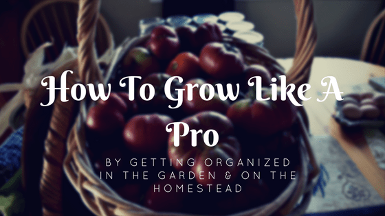 How to Grow Like a Pro By Getting Organized in the Garden
