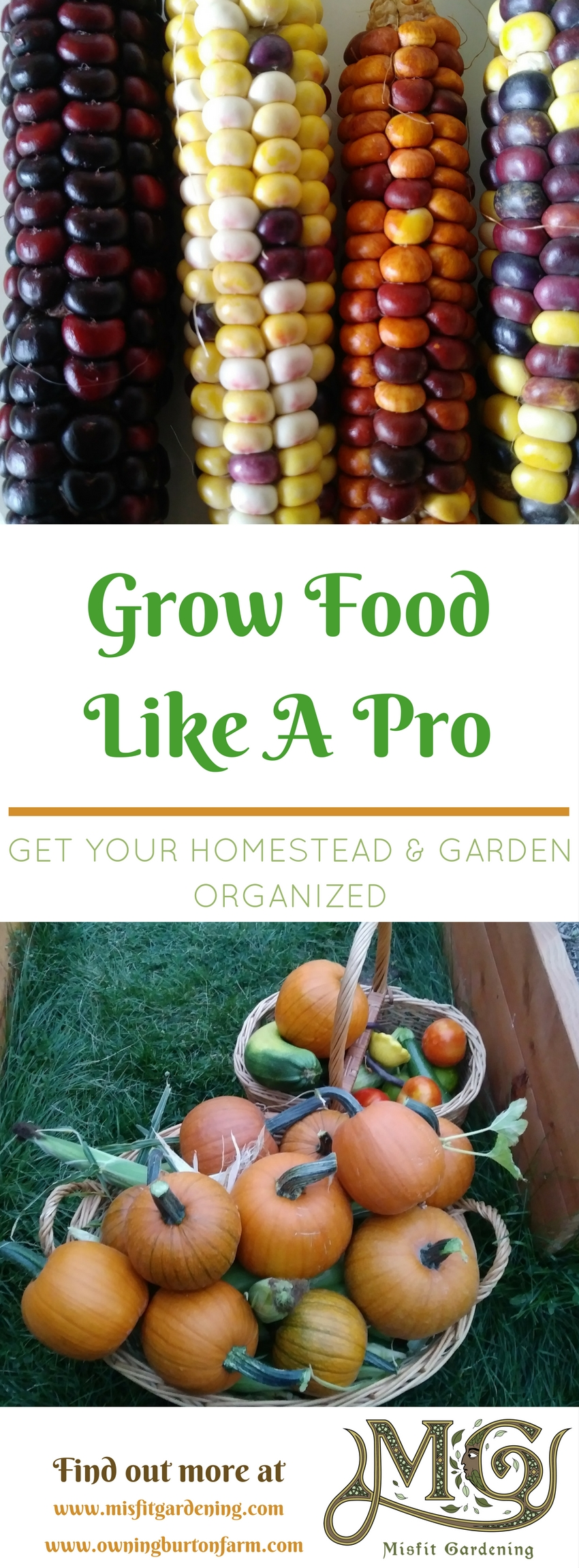 How to get your garden and homestead organized to grow your own food like a pro. Click to find out how to get organized or pin it for later