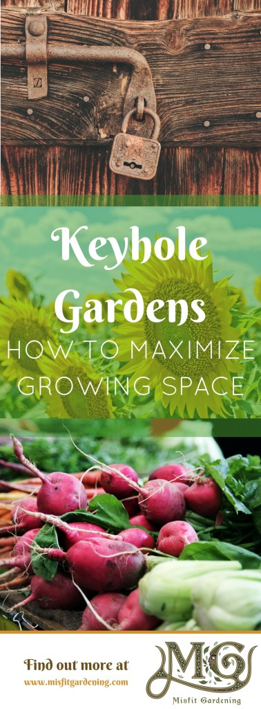 How to maximize the growing space with a keyhole garden. Click to find out how this permaculture design can help in your garden or pin it and save it for later
