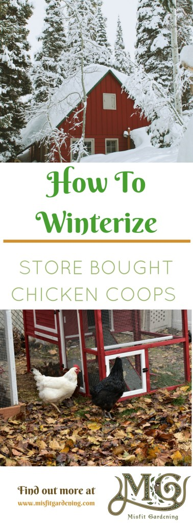 How to winterize a store bought chicken coop for less than $10. Click to find out how to insulate your prefab chicken coop or pin it and save it for later