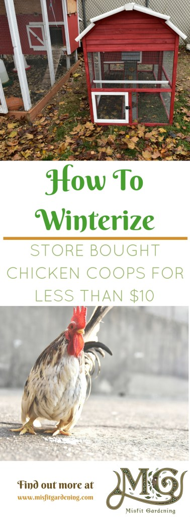 How to winterize store bought chicken coops for less than $10. Click to find out how to insulate your pre-fab chicken coop or pin it and save it for later.