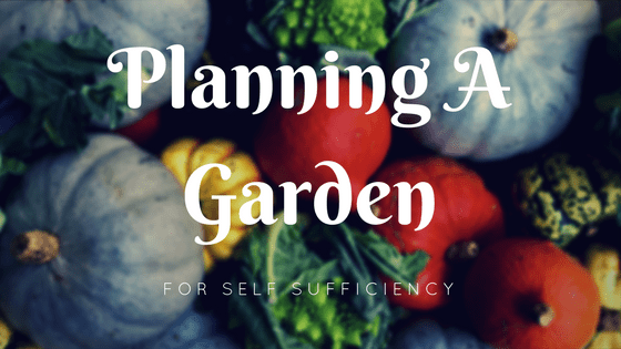 Planning A Garden For Self Sufficiency