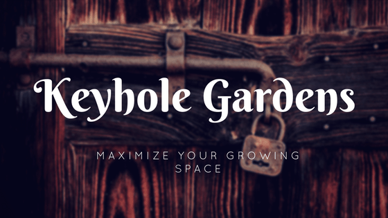 What is a Keyhole Garden Bed and Why You Need Them