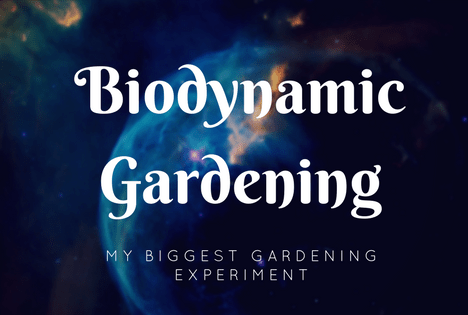 biodynamic gardening biodynamic farming