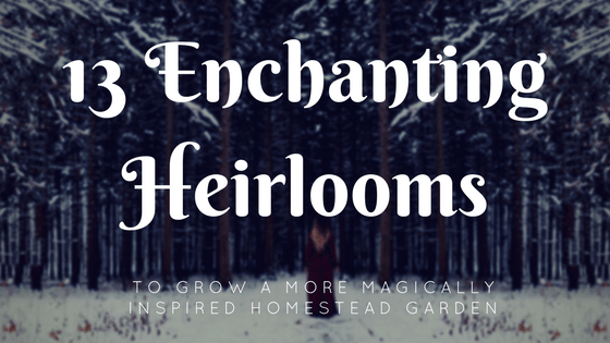 13 Enchanting Heirlooms You Should Grow