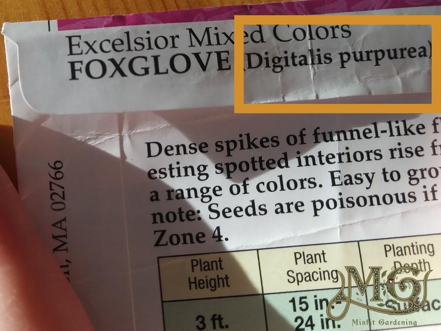 wie man den botanischen Namen der Samenpackung liest