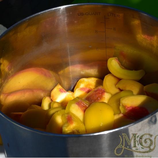 geschnittene Pfirsiche zum Verpacken