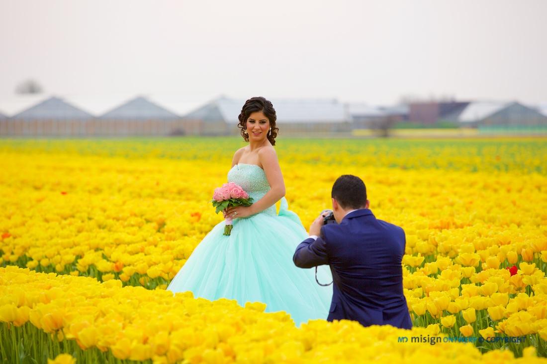 Bruid word gefotografeerd in bollenvelden met gele tulpen in Lisse