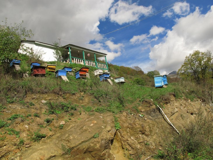 Beehives in Northern Armenia
