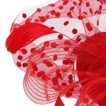 WINOMO Chapeau Bibi à Voile avec Plume pour Mariage Cérémonie Soirée (Rouge)