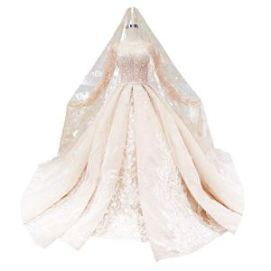 WFHhsxfh Robe de mariée Haut de Gamme personnalisée rétro rétro à Manches Longues, Robe de Banquet, Robe Adulte Robe de mariée Champagne Robes de mariée pour la mariée (Size : US6)