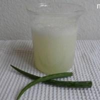[:de]1 Zutaten, 4 Produkte: Aloe Vera Gel[:fr]1 ingrédient, 4 produits: Gel d'aloé vera[:]