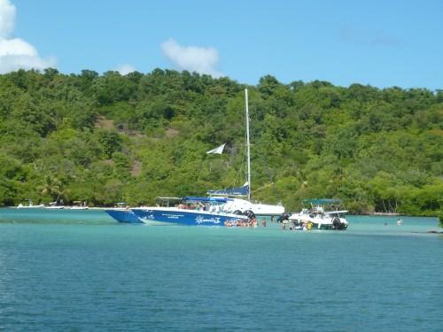 Captain Roro bateau journée iguane martinique
