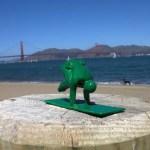 Yoga Joe Crow Pose San Francisco