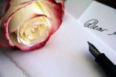 pale-rose-1452656__340