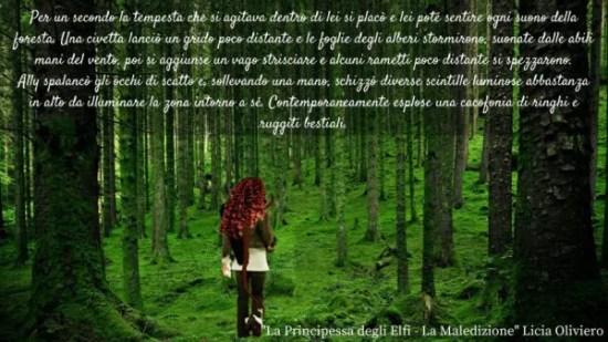 Principessa degli elfi licia oliviero