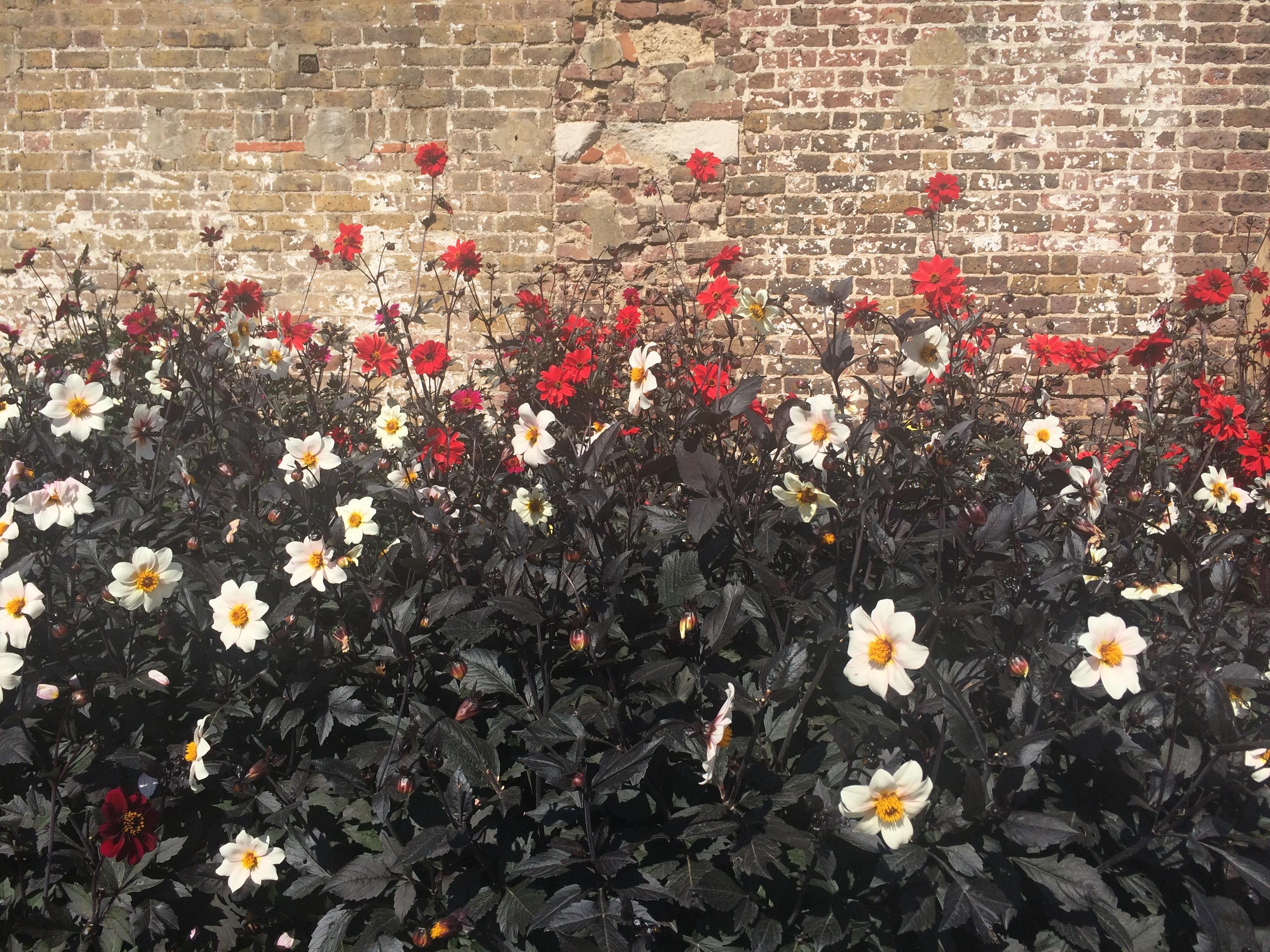 fulham-palace-garden