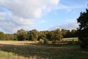 missecalwell_hampstead_heath_london
