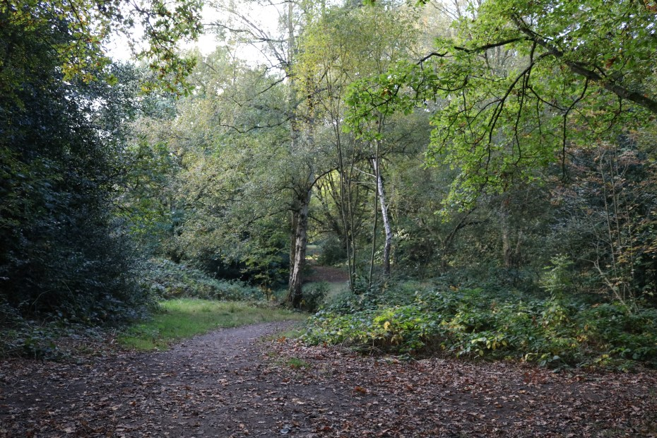 hampstead_heath_11