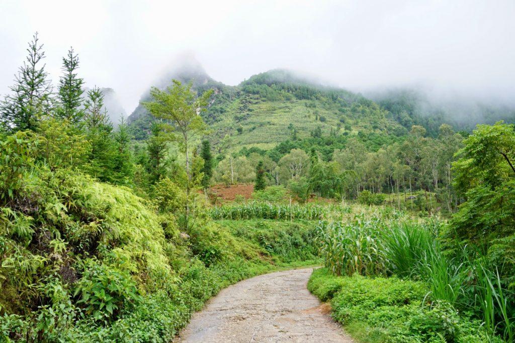 Ha Giang road
