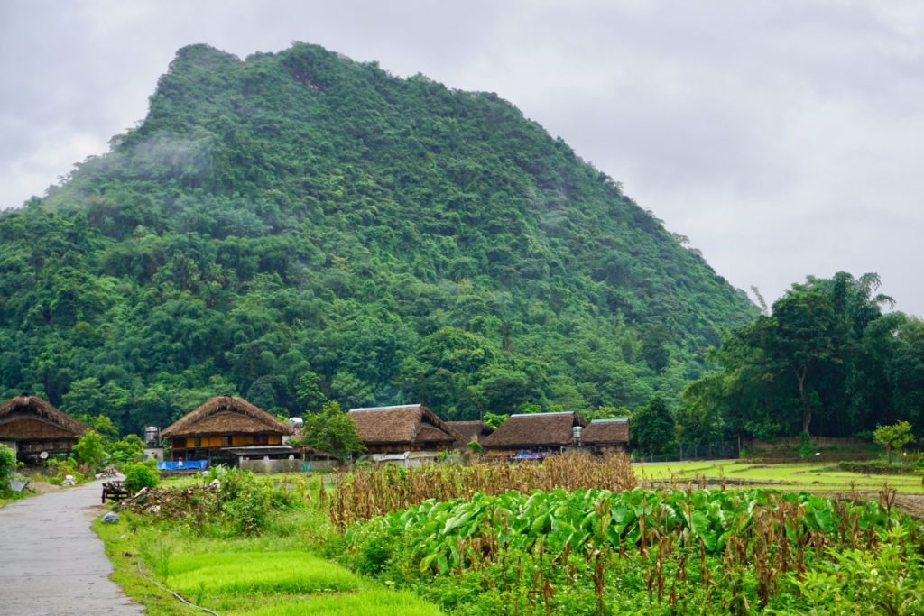 Village Life Ha Giang