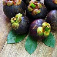 Acai Beeren: Ein neues Superfood: Die Acai Beeren regen den Stoffwechsel und die Verdauung an. (c) Fotolia