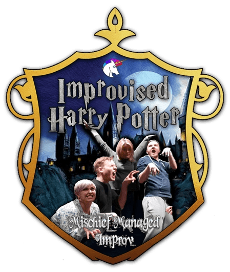 Improvised Harry Potter - shield