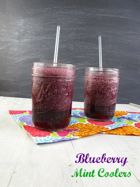 Blueberry Mint Coolers - Miss in the Kitchen