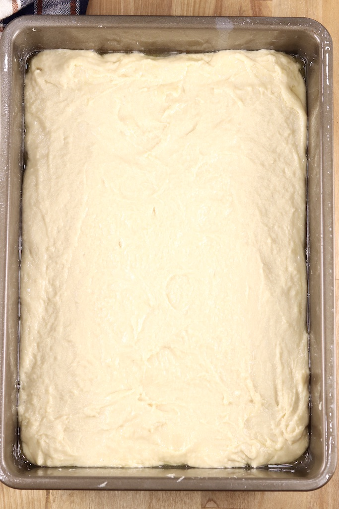 Coffee cake batter in a 9 x 13 pan