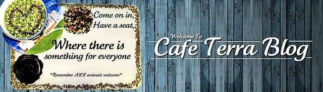 cafe terra