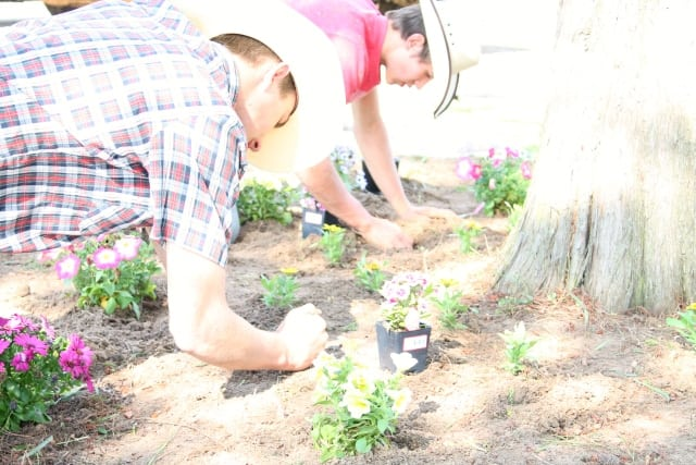 cody and tucker planting flowers