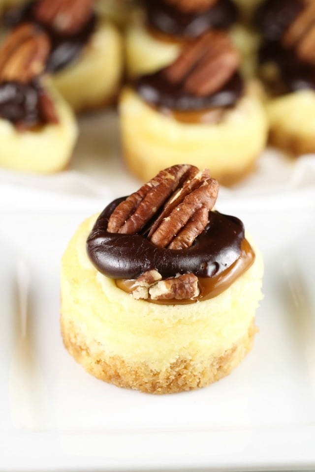 Mini Turtle Cheesecakes Recipe ~ Great for holiday entertaining ~ MissintheKitchen.com