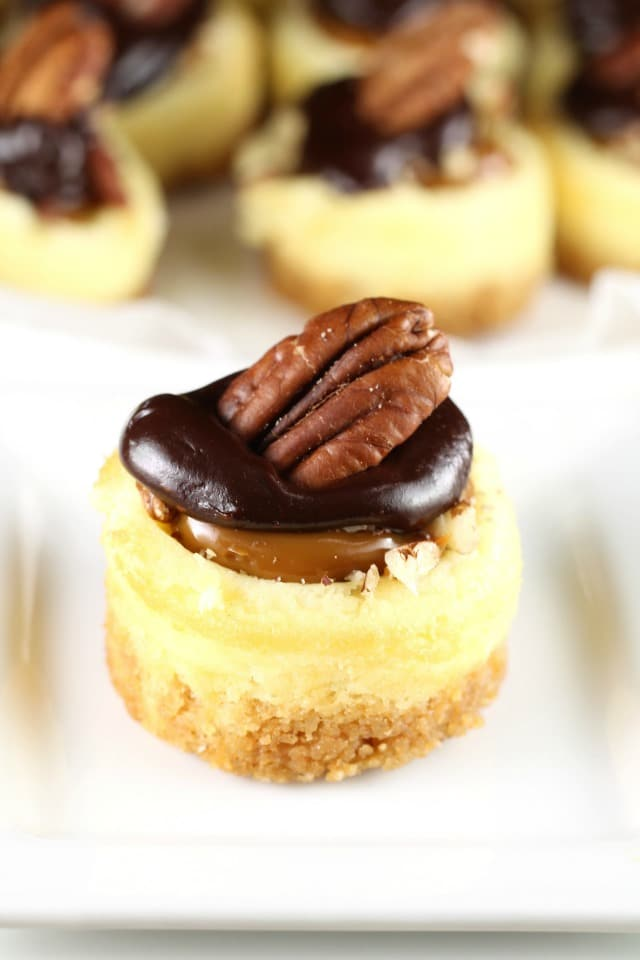 Mini Turtle Cheesecakes Miss In The Kitchen