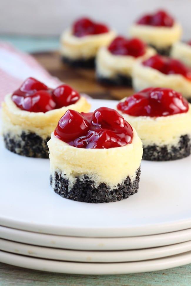 Close up mini cherry cheesecakes dessert