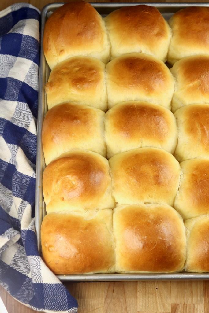 Milk Bread Honey Buns - dinner rolls