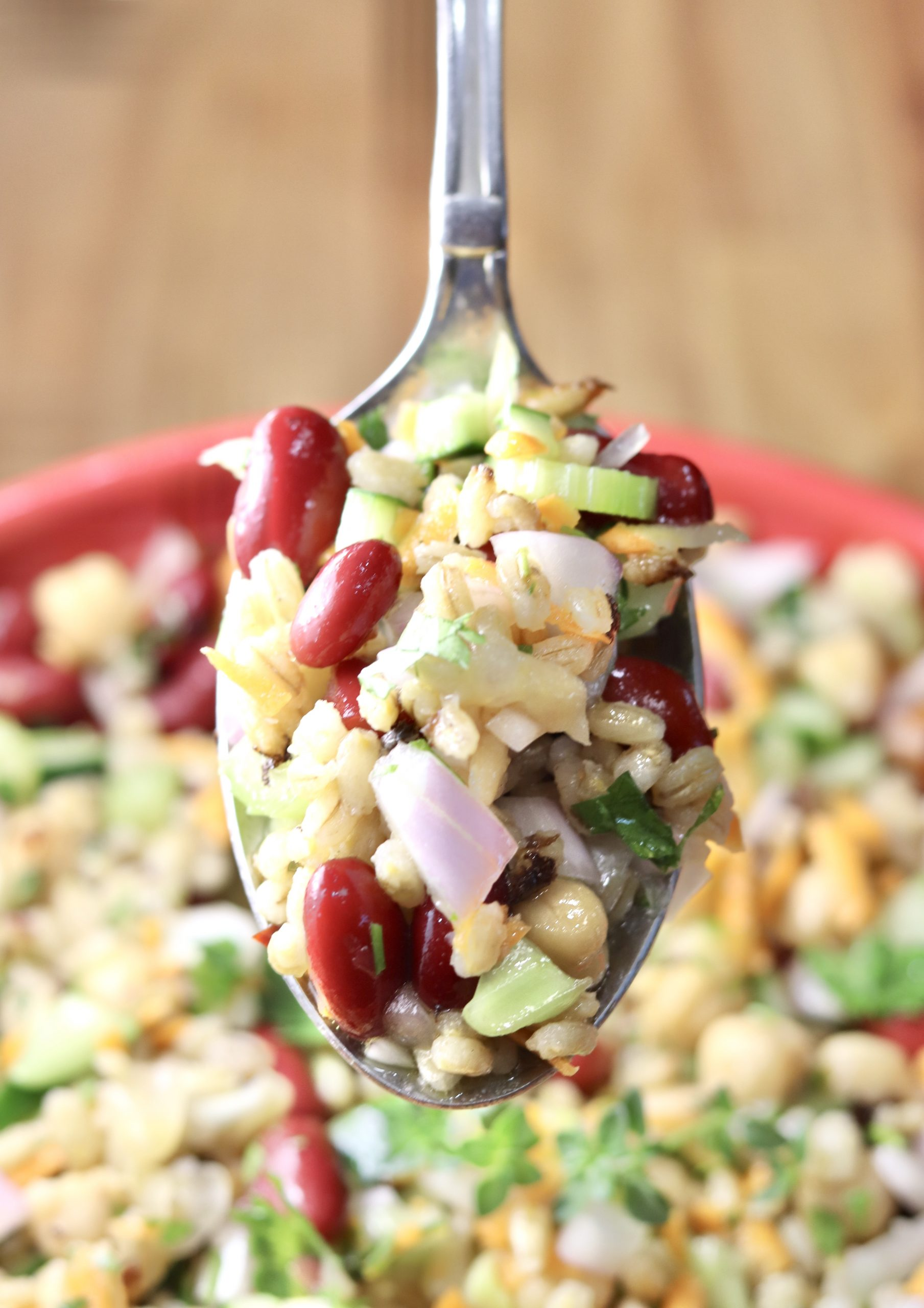 Spoonful of Bean and Barley salad with vegetables