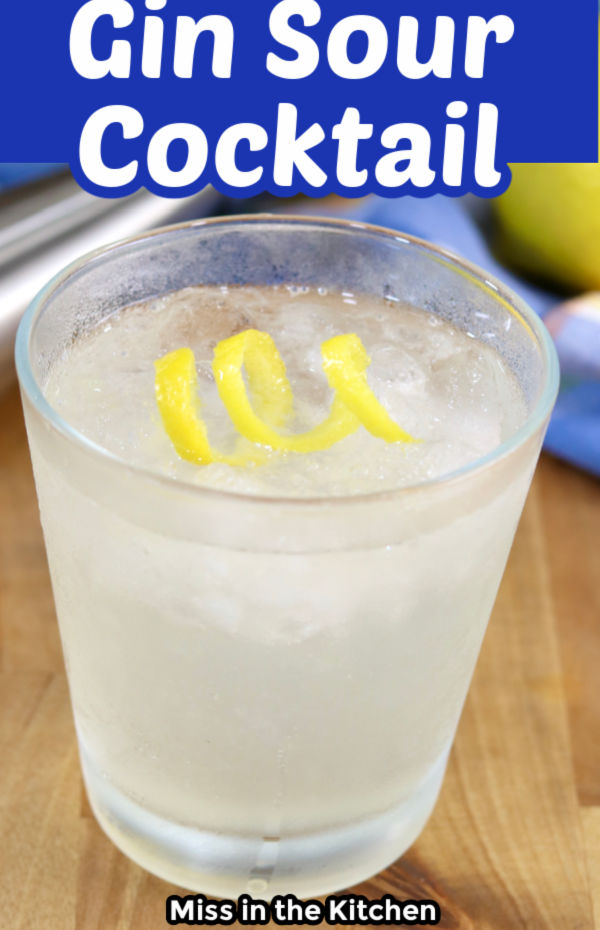 Gin Sour Cocktail with text overlay
