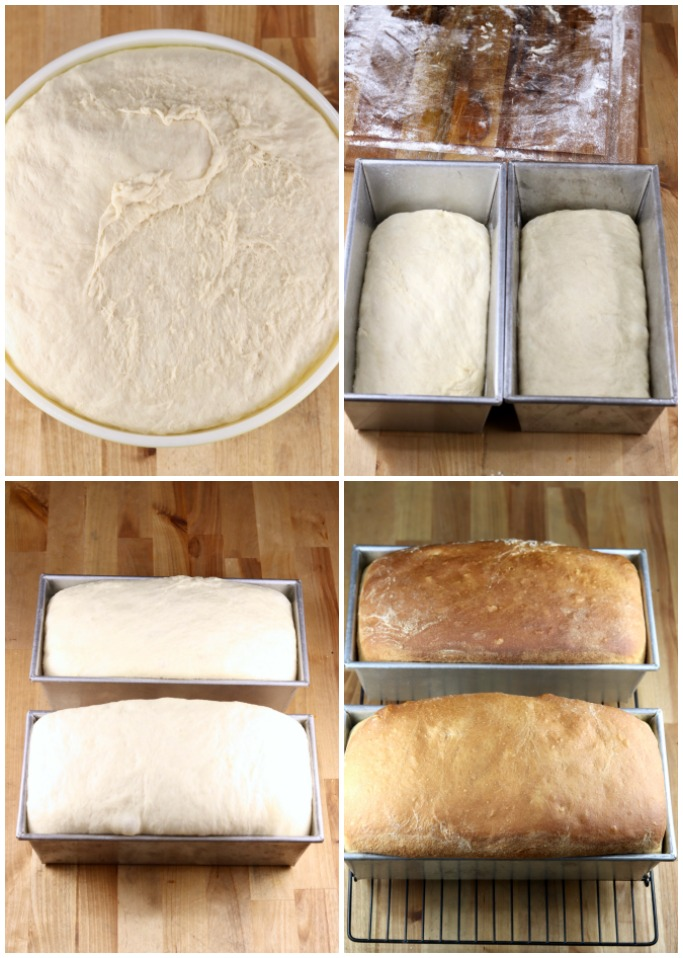 Rising dough, dough in 2 loaf pans, risen dough in pans, baked loaves of bread