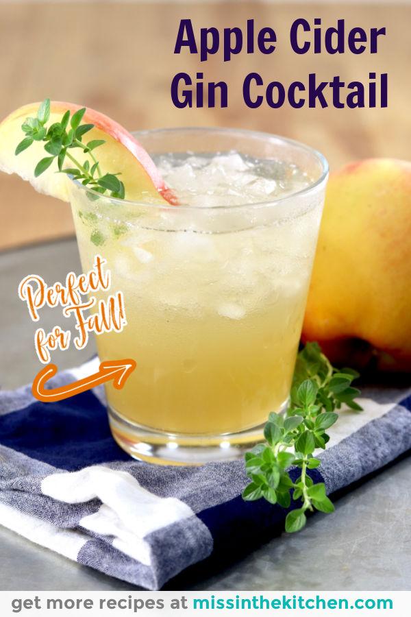 Apple Cider Gin Cocktail