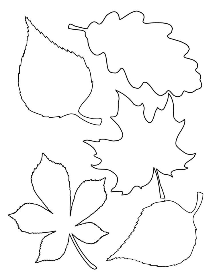 Basteln im Herbst mit Kindern – von Naturmaterialien bis Knöpfe, Mission Mom