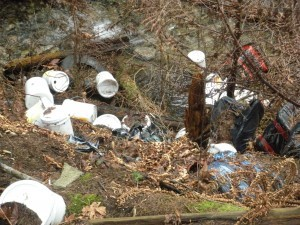 Picture of litter in a ditch
