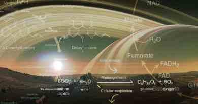 biochimiche alternative e alieni