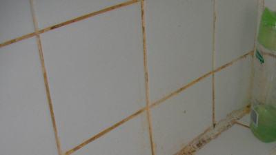 prodigiosina nel bagno